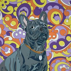 French Bulldog on Paisley Background by Dylan Izaak - Original Painting on Aluminium sized 28x28 inches. Available from Whitewall Galleries
